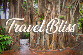 Travel-Bliss